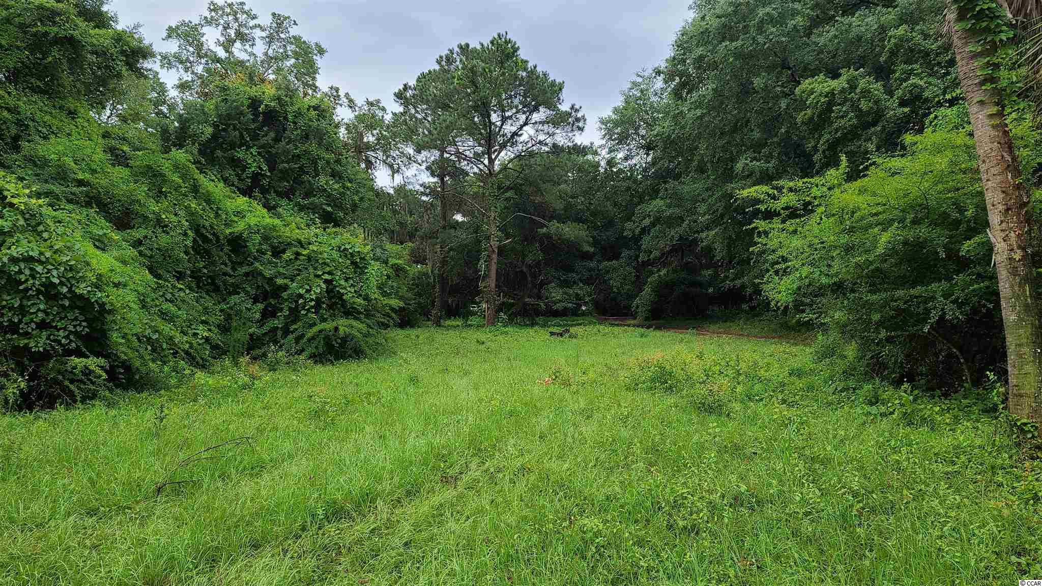 This beautiful 0.47-acre lot has approximately 105' of frontage along Sunnyside Avenue. It is located less than 0.25 mile from the inlet and just east of US Highway 17 Business, which provides easy access to the Grand Strand area.