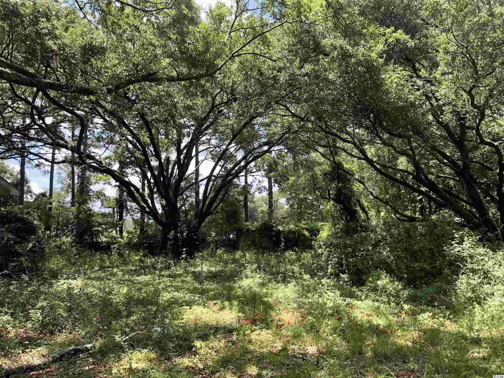 7 +/- Acreage available 14 miles South of Georgetown ready for someone to make it theirs. Over 7 acres with 330ft of road frontage on Hwy 17S. Septic tank and well are onsite. Buyer is responsible for all inspections. Billboard on site is rented yearly and paid to the owner. Selling agent is related to the owner.