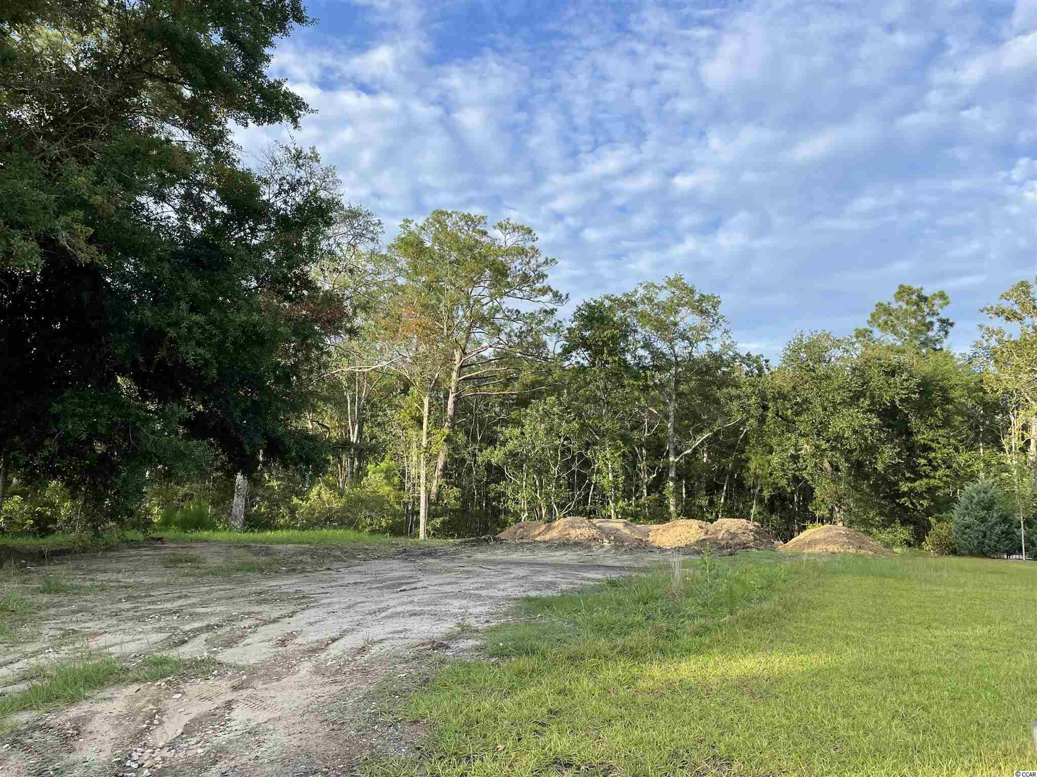 A Boat Dock that opens to the Waccamaw River is available for all residents in the neighborhood.