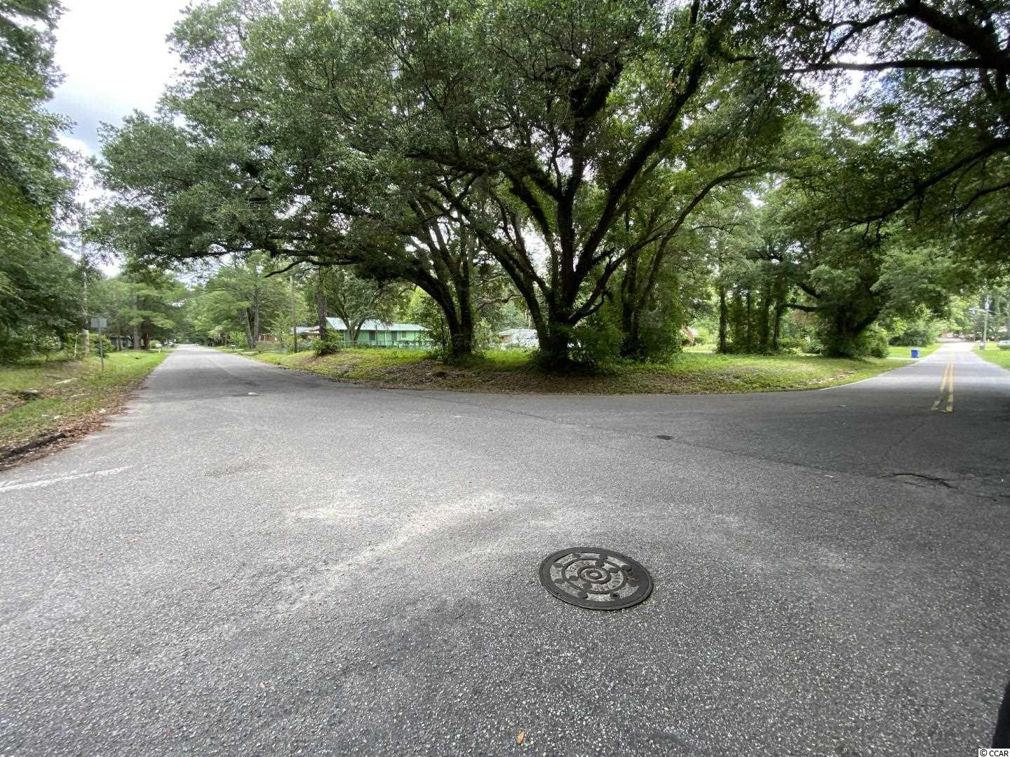 Beautiful 0.35 acre corner lot in the heart of Conway- only a short walk to Downtown.