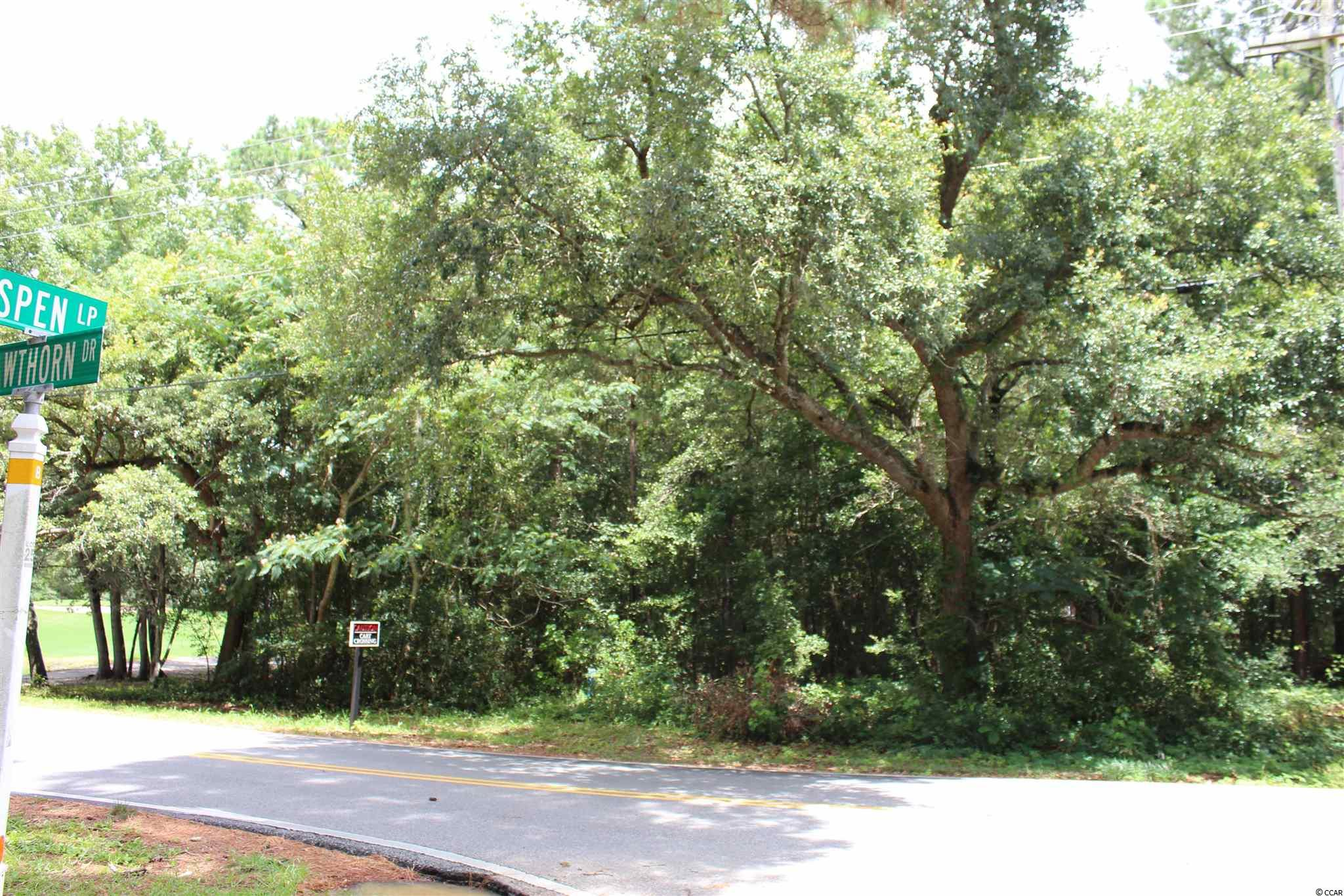 Beautiful wooded lot in Pawleys Island, SC.  Views of the pond and the elevated 10th green of Litchfield Country Club Golf Course giving you great views to enjoy your morning coffee or evening cocktails on your future deck. The best part is that you are minutes from the beach and the public boat landing on the Waccamaw River. Convenient to great local shops and dining in beautiful Pawleys Island, SC.