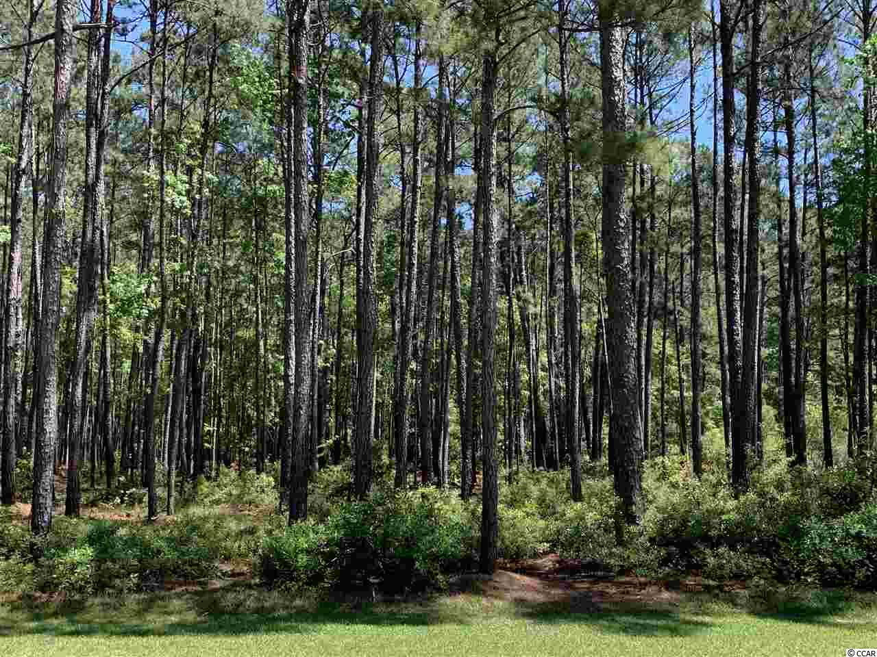 This lovely treed lot is on the Oceanside of Prince George! 3.95 acres just around the corner from the Prince George Oceanside clubhouse and beach access. Don't miss your chance to live in this unique community! Just south of Pawleys Island, the Prince George community offers 150 unique single family homesites that stretch from the Atlantic Ocean to the Waccamaw River (IntracoastalWaterway). Prince George oceanside amenities include a swimming pool, clubhouse, tennis, volleyball and basketball courts,  nature trails and a 5-acre lake. The riverside amenities include a River Clubhouse with sitting area, fireplace, boardwalk and 28-slip marina.