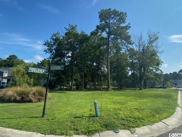 Buy now & Build your dream home in beautiful Waterbridge; a popular, gated, award winning community.  This pristine building lot offers a private wooded back yard, and is situated on the corner of Yellow Morell Way and Fiddlehead Way.  The property is nestled in-between two(2) stunning custom built homes and is just moments away from private amenities.  This neighborhood features, lined streets lit by lanterns, underground utilities, and beautiful waterways with open natural park-like vistas.  Residents enjoy year round resort-style amenities. Featuring a swim-up refreshment bar, an it shopping, dining, entertainment, golf, area attractions and the beautiful Atlantic Ocean!  The time is now to buy this property and build your own South Carolina Dream home!  It won't last. Call today!