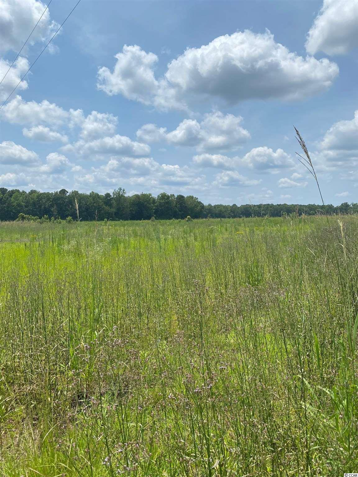 Beautiful Cleared 5.15 acre tract to build your dream home in the country. Will be deed restricted to detached single family stick built home.