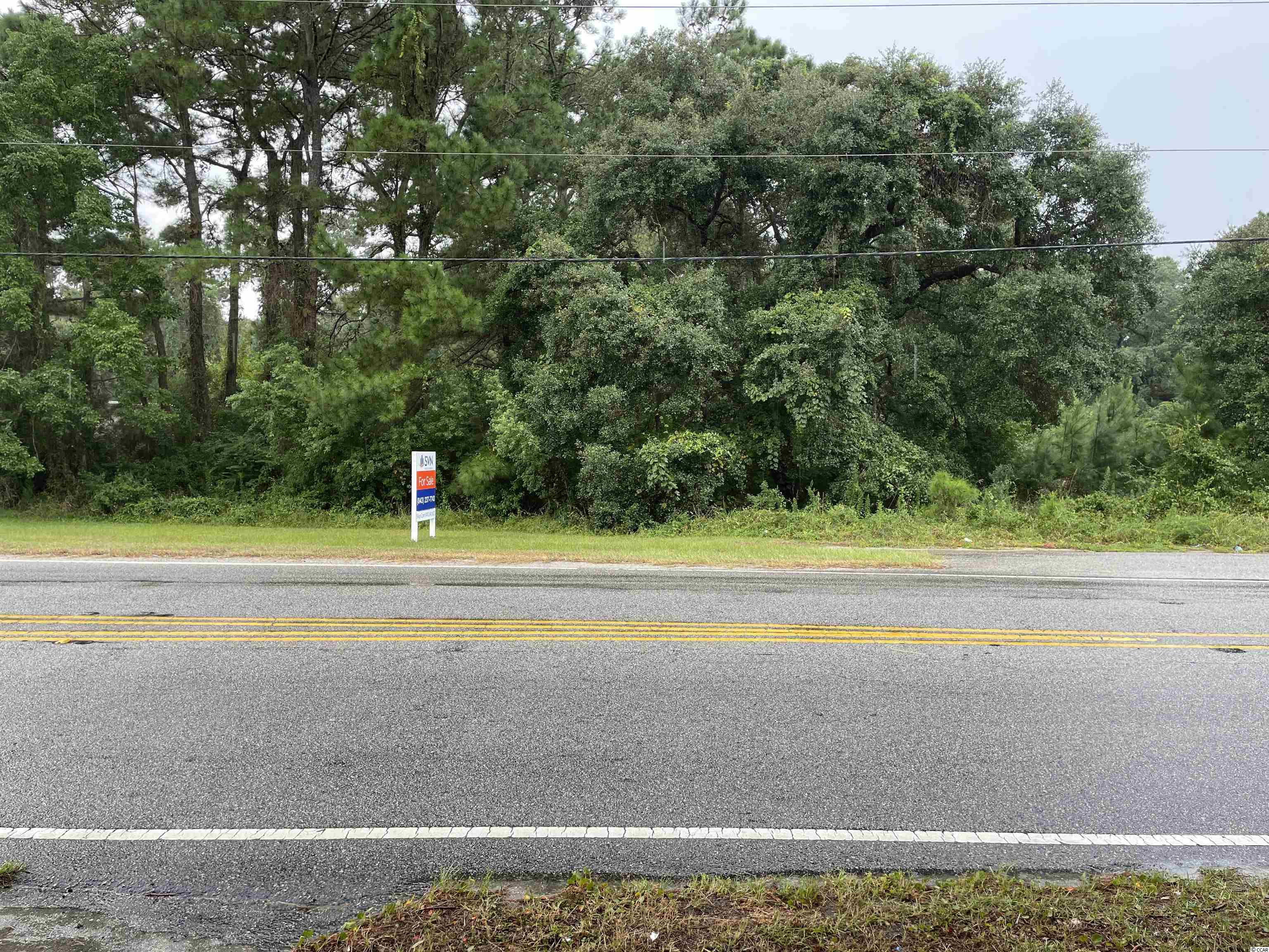 This is an excellent opportunity for development in the heart of Pawleys Island  1.96 ac. commercial property with all utilities.  Purchase price includes both lots.  Lot one is 1.26 ac. and lot two is .70 ac.  The lots can be sold separately or as one. Permitted use as General Commercial and property is subject to the Overlay District in Georgetown County.