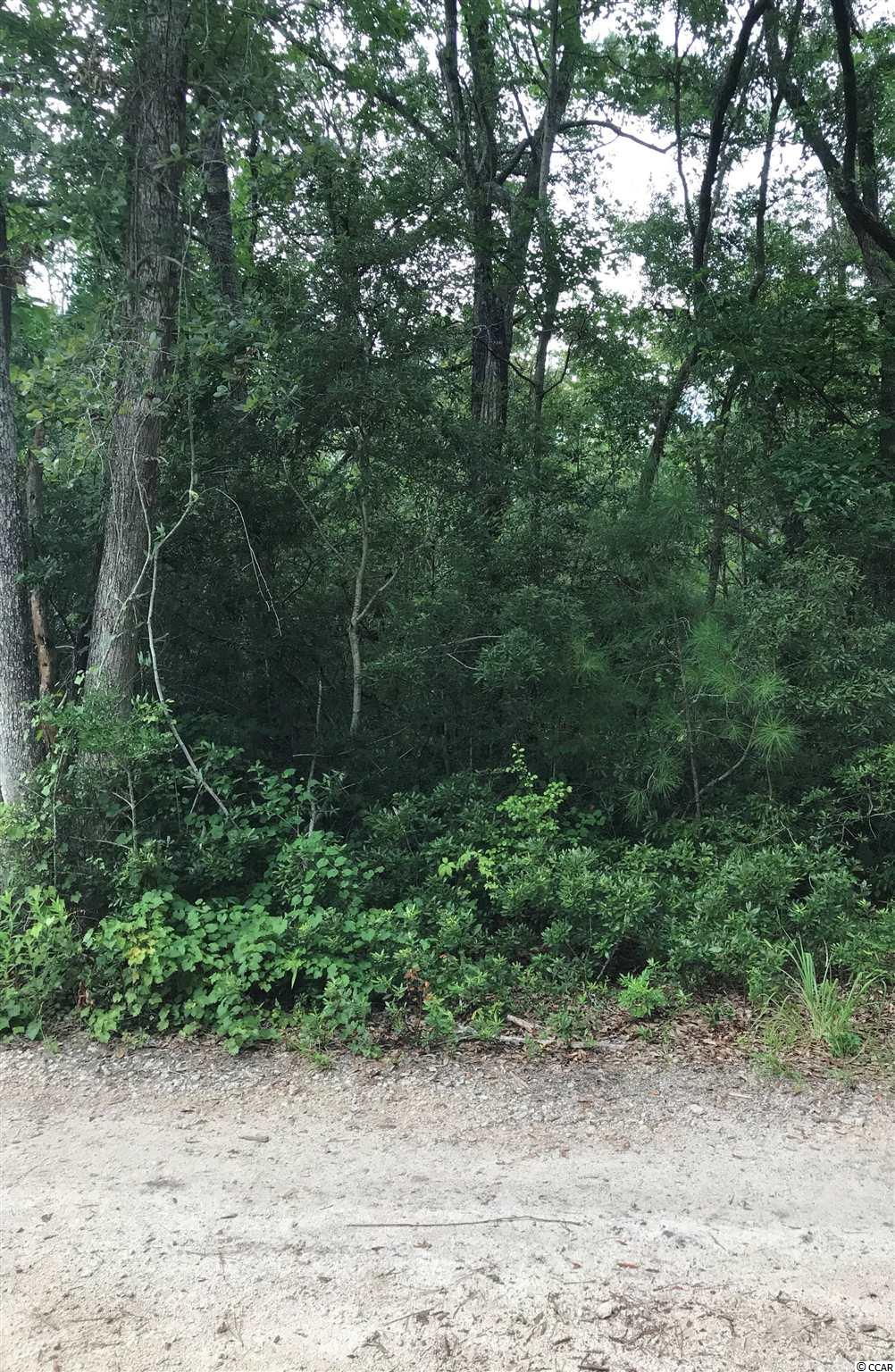 This is a great lot to build your new home on. It is just minutes to the Beach, Shopping and Dining. Don't miss out on this one.