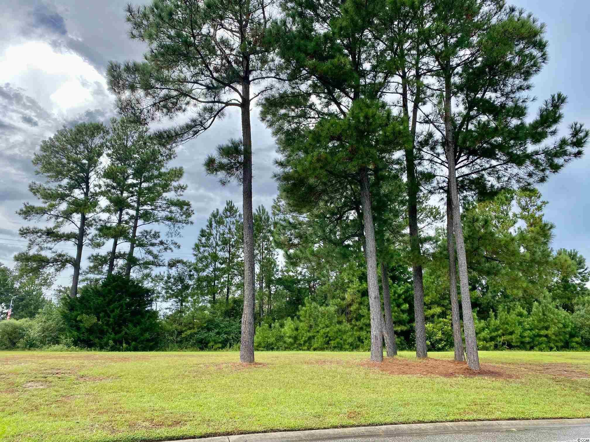 Welcome to this hidden gem in Little River, SC that has some of the most beautiful homes within a gated community.  Build your dream home in the prestigious Waterfall community with an 8.5 acre lake, community pool and beautiful amenity center. This beautiful lot is only minutes away from shopping, dining, dog park, sports complex and the beach!