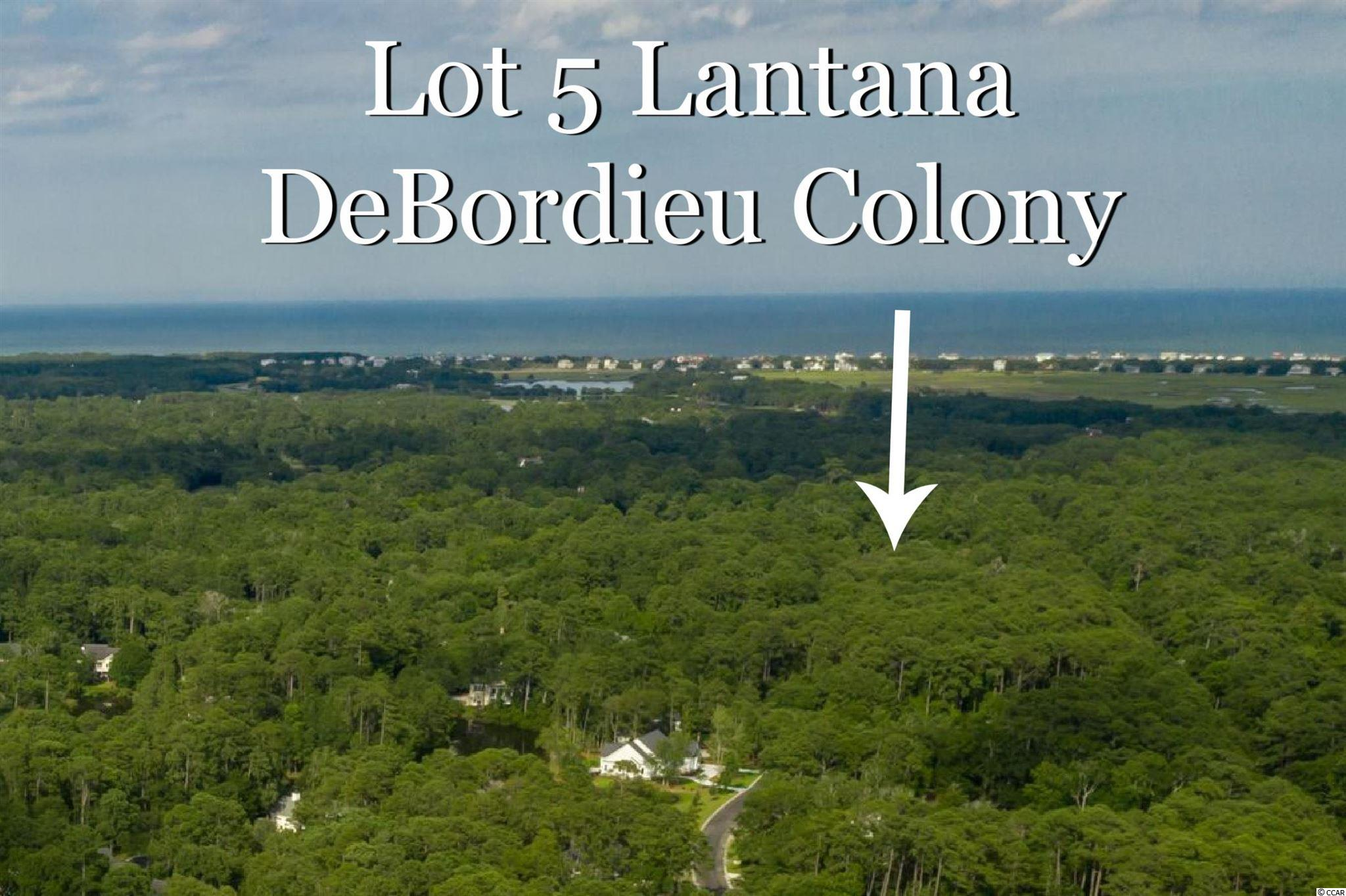 ALMOST AN ACRE (.87) in DeBordieu Colony! The convenient Patewood North location is close to the entrance of DeBordieu, providing quick access to Pawleys Island and Georgetown area shopping, dining and health facilities, while still offering a nice leisurely golf cart ride to DeBordieu's private golf course, tennis courts, fitness center, ocean front beach club and boat landing access to North Inlet. Dimensions of this beautiful wooded home site are 112 x 278 x 181 x 248.