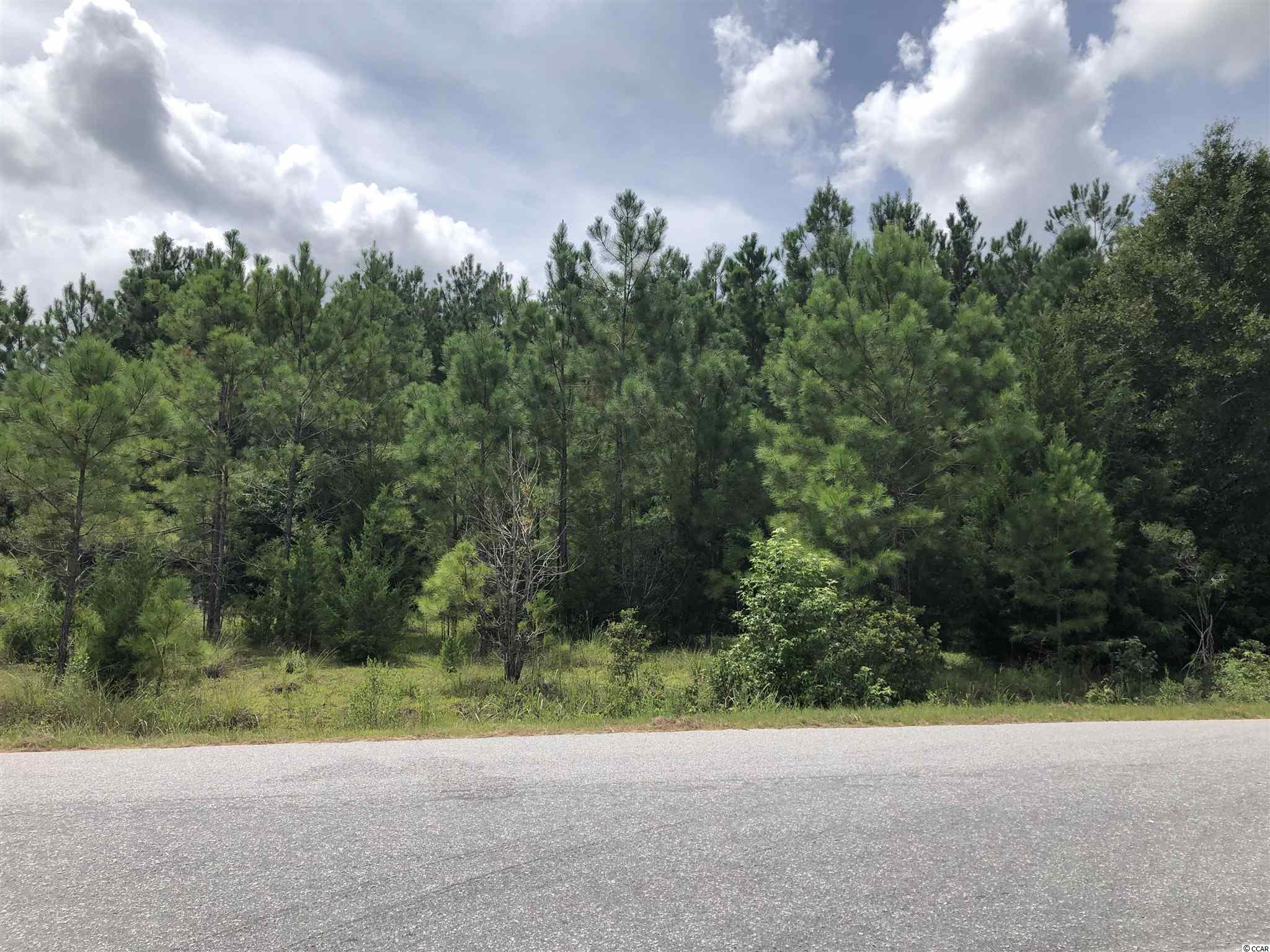 Fantastic Development opportunity in fast growing area of Georgetown County. Over 9 acres with Public Water/Sewer and over 650' of frontage on Windsor Road.