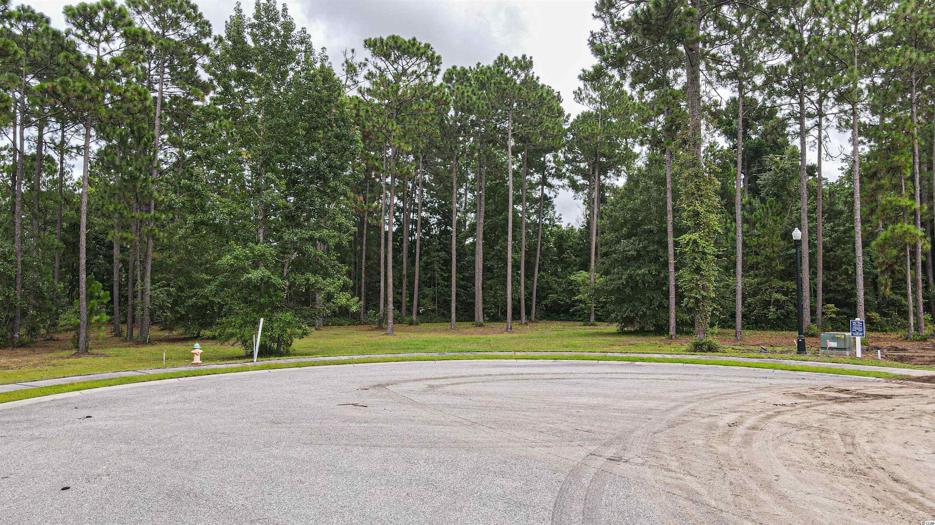 Check out this beautiful 1.24 acre lot in this highly desired neighborhood in wild wing plantation. With 27 holes of golf and 180 acres of lakes for fishing and kayaking, this community has something for everyone! This lot is at the end of a cul-de-sac and has a hidden trail behind it that leads you to a lake. There is no time frame to build, making it easy for you to take your time and choose your custom design options for the home. Please keep in mind the community has special requirements for building. The clubhouse offers a fitness center, three pools, a water slide for the kids to enjoy, driving range, and docks. Just minutes away from the beach and downtown Conway. Don't miss your opportunity to have the biggest lot available in the community to build your dream home!