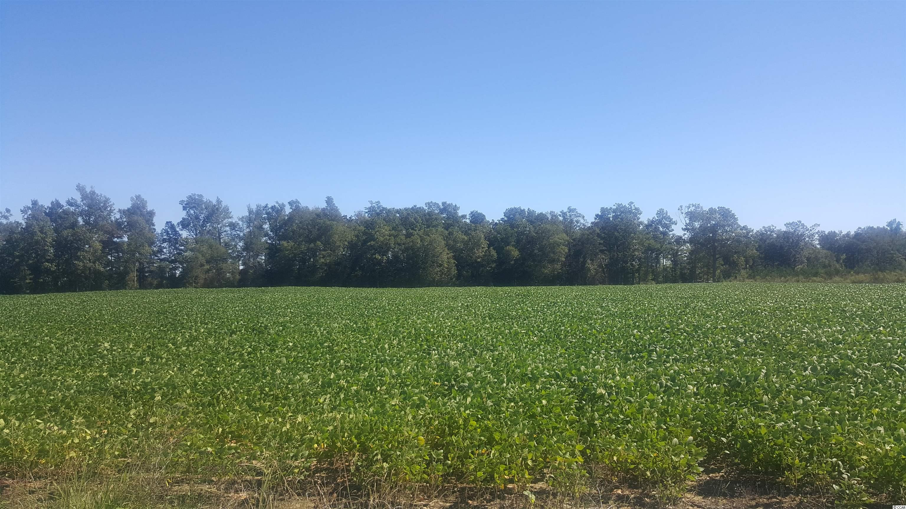 This is a very well maintained farm with over 138 acres to enjoy the wildlife.  The trails are well maintained so you can walk or ride four-wheelers to fine the perfect spot for the deer hunter in your family.