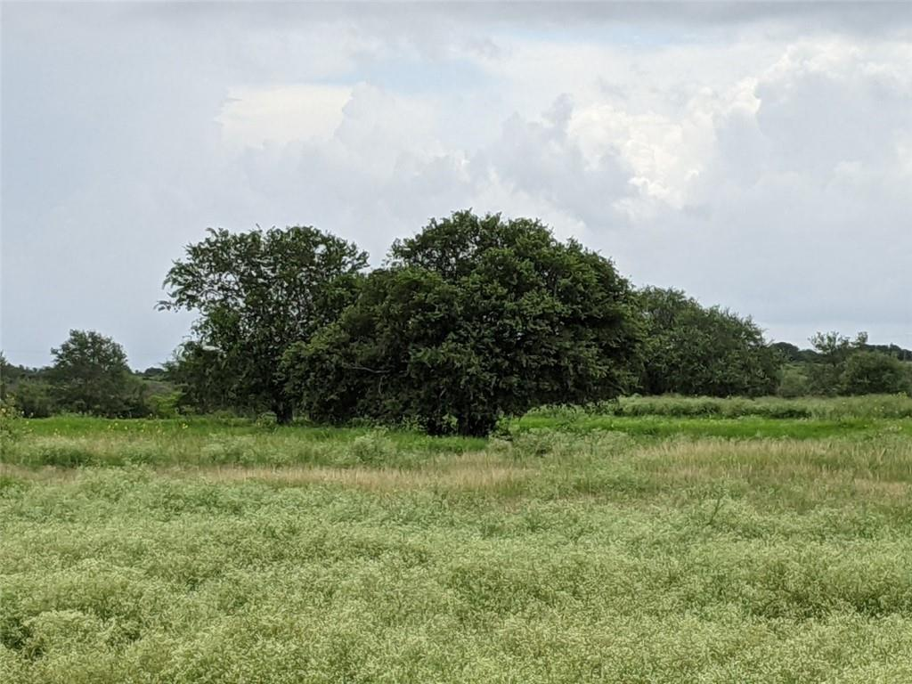 24.841 acres (BCAD) at the corner of HWY 59 and Cobb Webb Road.  Fenced, Lots of Trees, Water Well and Septic.  About 7 miles North of Beeville, Texas.