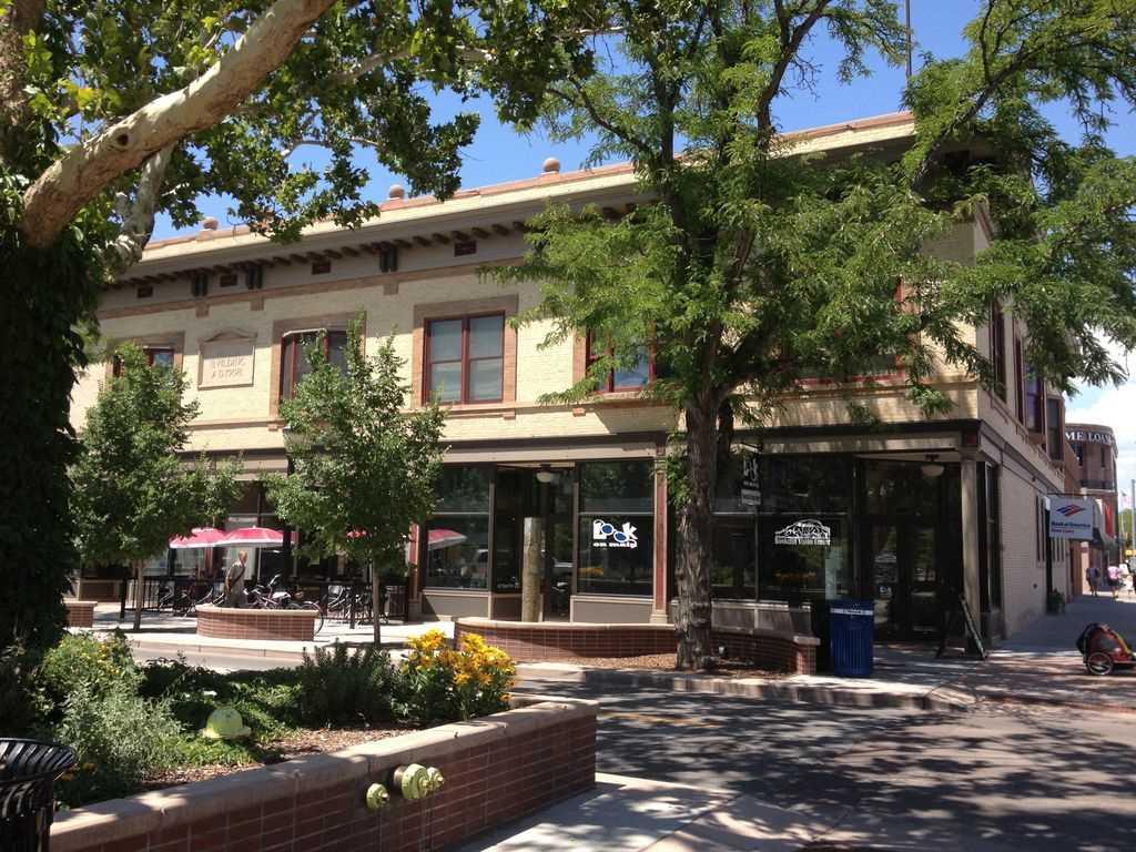 115 N 4th Street 204, Grand Junction, CO 81501