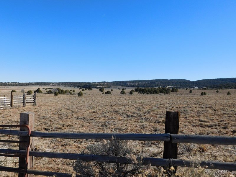 TBD S 16 1/2 Road, Glade Park, CO 81523