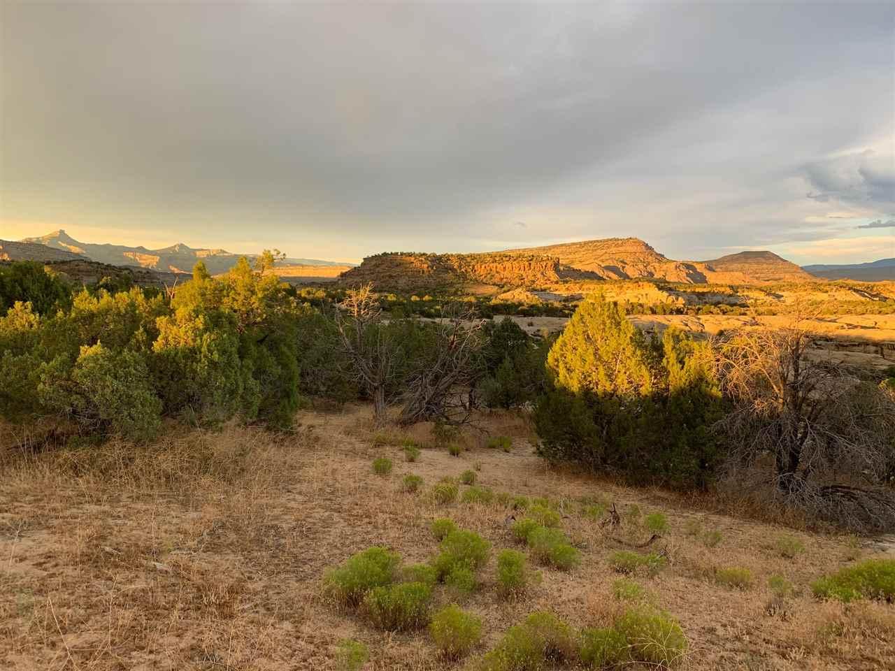 TBD 45 1/2 Road D, Mesa, CO 81643