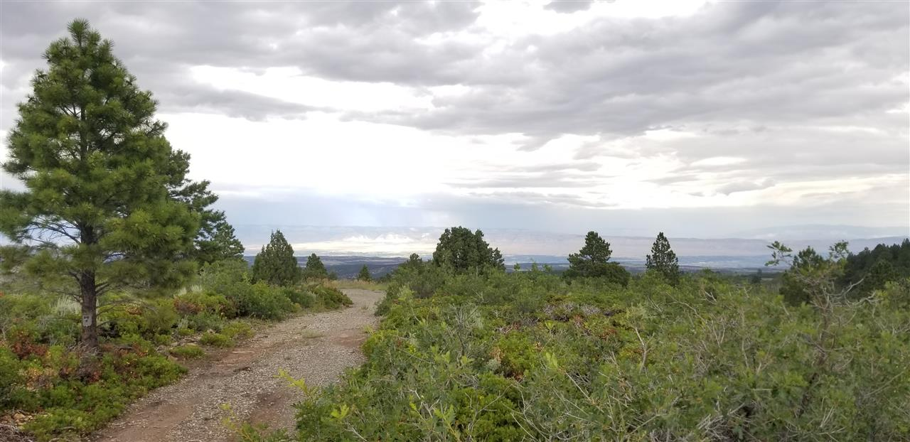 17150 S H 3/10 Road, Glade Park, CO 81523