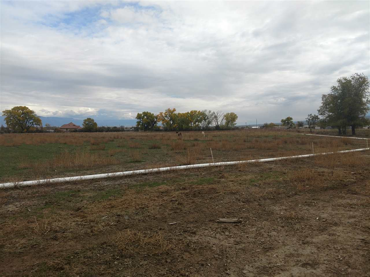 824 22 Road, Grand Junction, CO 81505