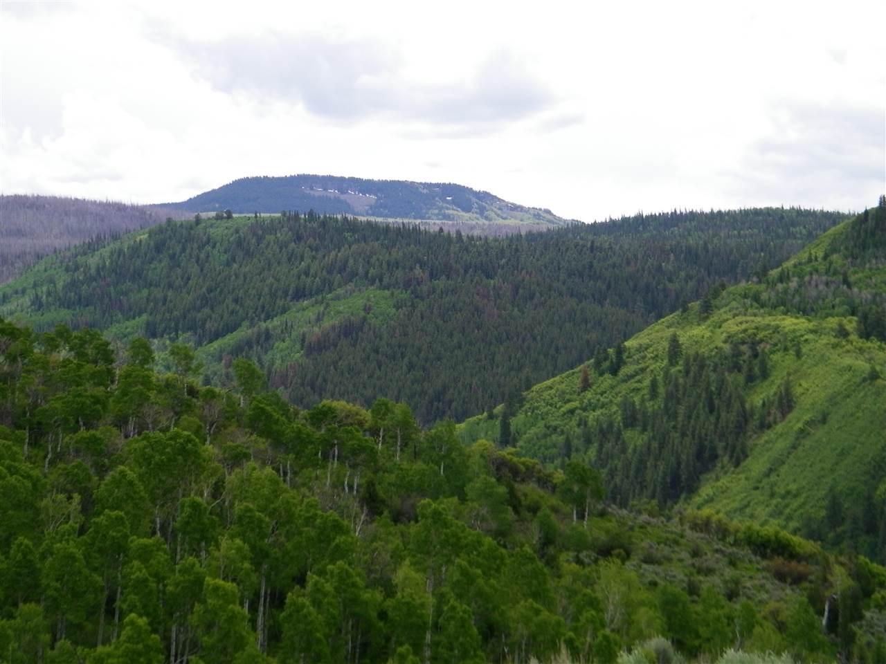 TBD 10 Road, Meeker, CO 81641