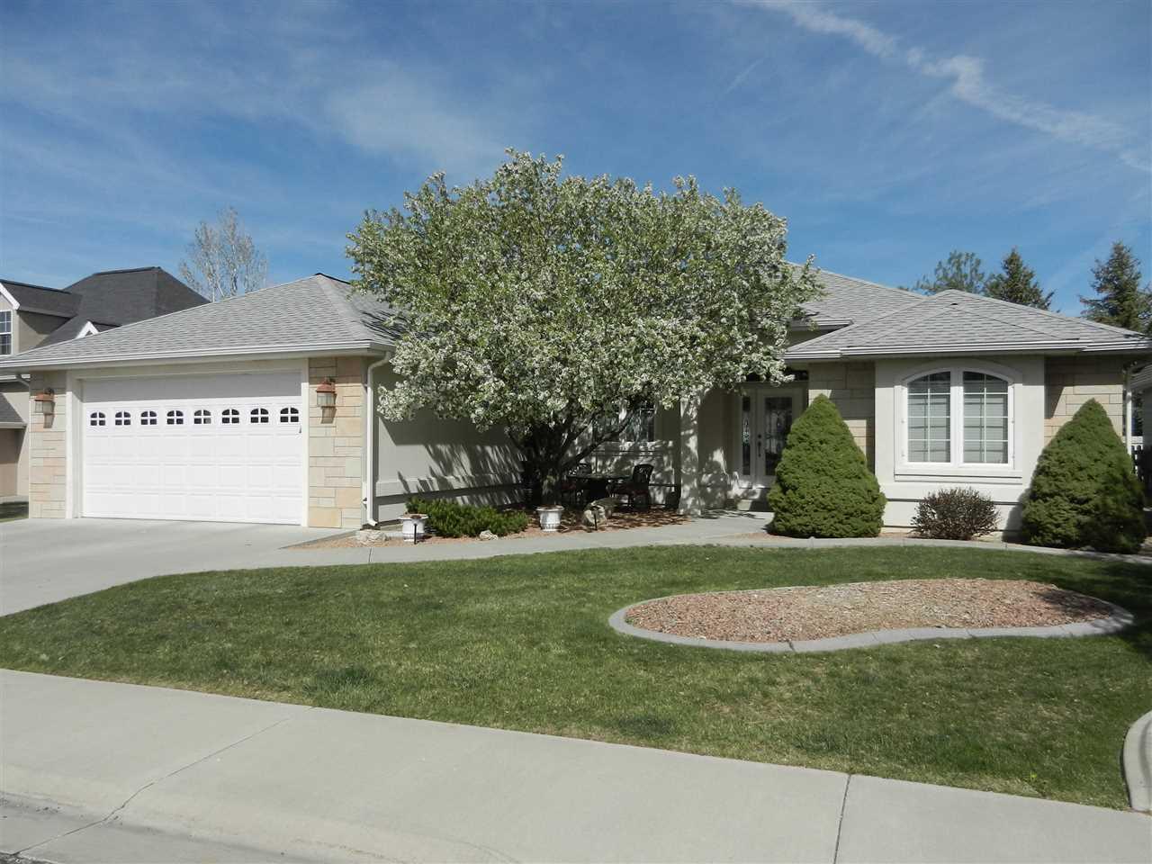 3915 Lone Tree Lane, Montrose, CO 81403