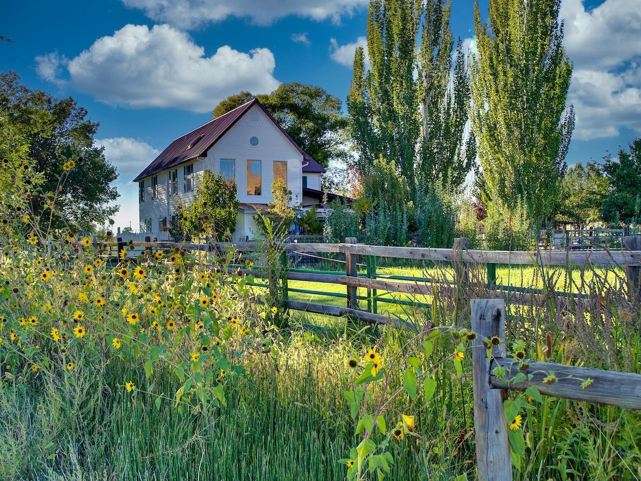 Views, Views, & More Views! Nestled up next to Palisade wine country and situated at the base of Mt. Garfield with dramatic views of the Bookcliffs and the Grand Mesa, this charming horse property is ready and waiting for you…and is a rare opportunity! The home is well laid out with room to roam through the main level living room, family room, updated kitchen, a ¾ bath and one of your four bedrooms. There are three additional bedrooms and two full bathrooms upstairs....the Owners Suite has a large on-suite bathroom with a jetted tub and dual shower heads.  The Owners Suite also has a large adjacent loft area bringing in the surrounding views and the options for this flexible area are extensive…will it be a library, sewing room, exercise area…let your imagination contemplate all the possibilities with this wonderful space for a custom retreat!  Walk through the large 3-season porch to the 5.41 acres of peaceful tranquility where you will find apple, pear, peach & cherry trees, a grape arbor, chicken coop, and an aviary.  Beautiful grass hay pasture with gated pipe irrigation, barn/workshop with office & tack room, covered paddocks, arena, open runs, round pen, loafing shed, hay backstop, & even an observation deck for the arena area too!  Attend Taylor Elementary, Mt. Garfield Middle School, and Palisade High Schools. There is so much more to see…call today for your personal tour!