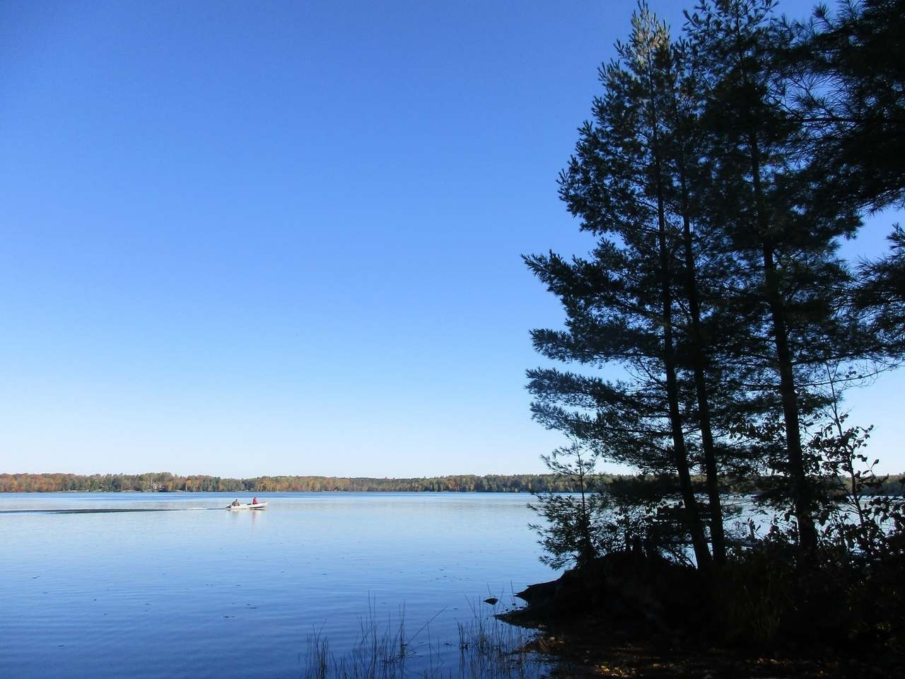 Rare Offering on Clear Lake of the Manitowish Chain of Lakes. End of the road privacy. This property offers 326 +/- feet of perfect frontage as well as 2.95+/- acres of well wooded Northern Wisconsin Solitude. The location of the improvements on this parcel allow for expansion or the construction of a larger residence - there is a gorgeous building site located adjacent to the cabin. New survey (2018) clearly shows all lines and corners. New conventional septic (2015). The property adjoins 1,000's of acres of the Northern Highland American Legion State forest which ensures the current secludedness will last a lifetime. Whether you're looking for a buildable lot or property with a solid 2 Bedroom home with a detached 2 car garage on the best lake of the Manitowish Chain you've just found both.