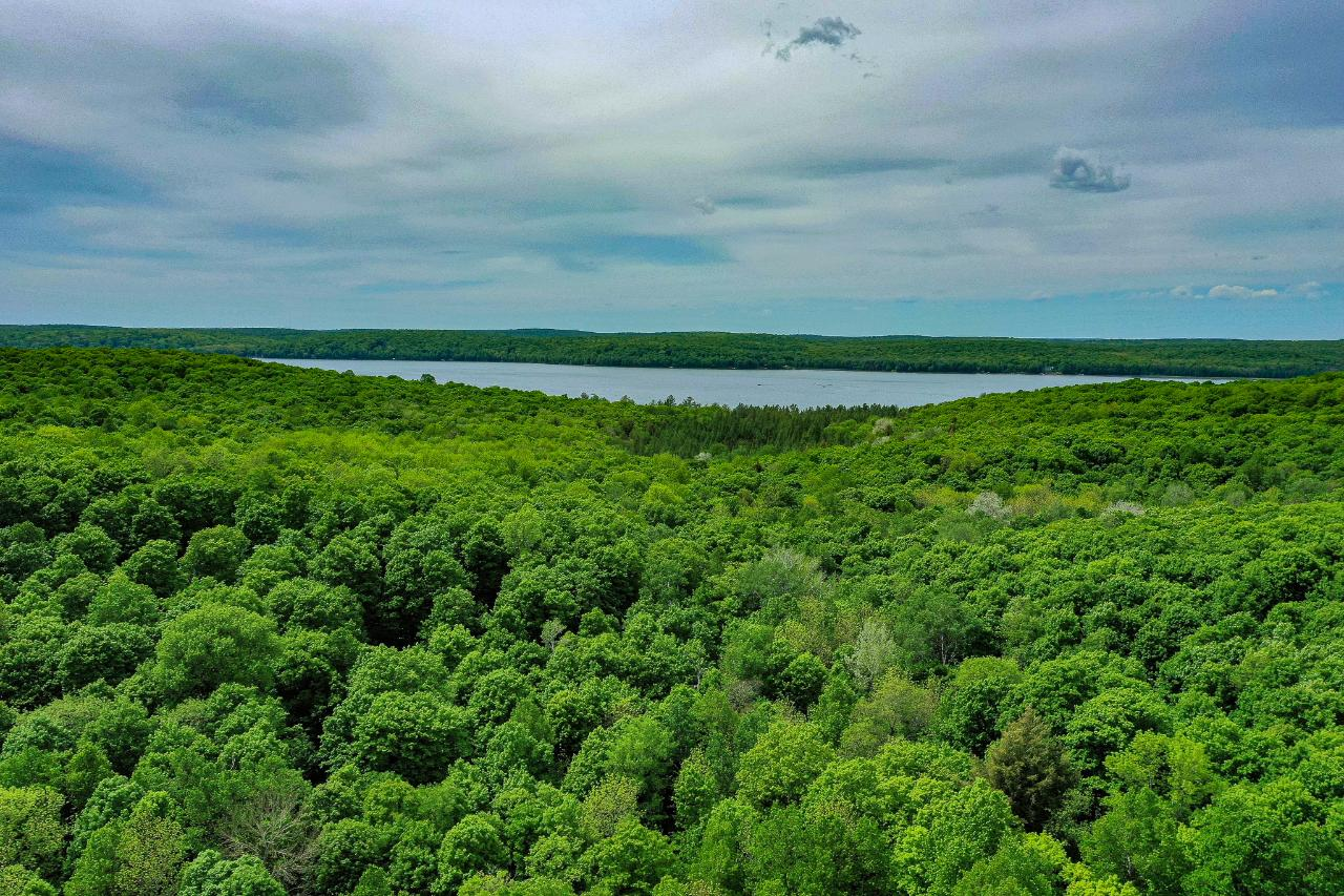 Rare opportunity to acquire large, well-maintained, strategic and developable rolling upland forest near three premier Northwoods lakes: Kentuck, Butternut and Franklin. Public maintained road on two sides, utilities in, potential for improved wireless access soon. Borders Nicolet Forest. Favorable zoning. Considerable timber value. Ecological inventory available done by local Land Trust. Seller prefers sale to successor owner(s) with persuasive vision for how property's future use/improvement under their ownership will best satisfy both community's Comprehensive Plan, and natural resource conservation simultaneously.