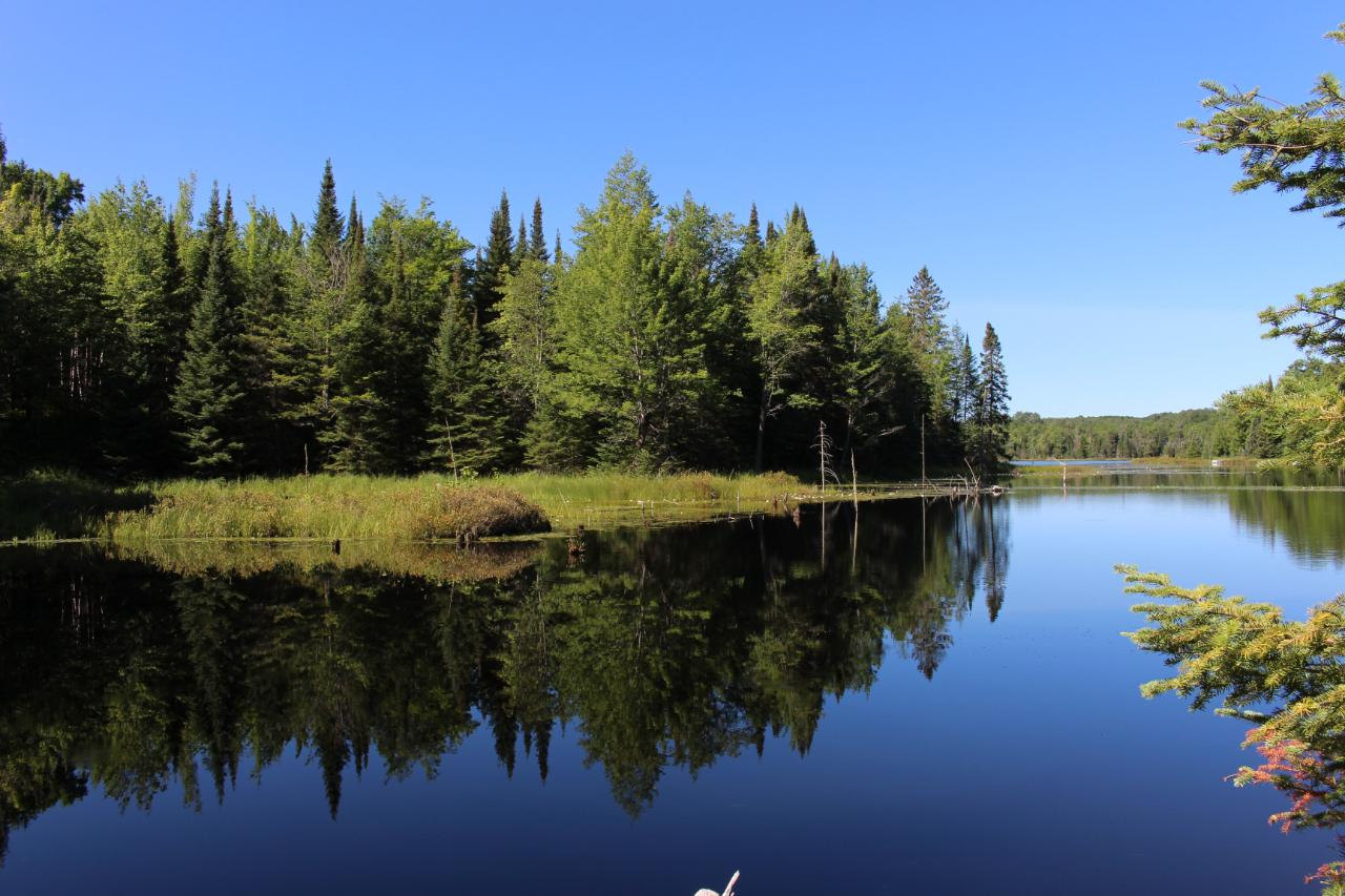 Paradise Found! 3 private lakes and 800 ft of perfect frontage on full rec Lone Pine Lake. A Presque Isle Paradise! No public access and managed for pristine qualities and superb fishing, plus 417 acres of rolling woodland with 2 private ponds and one large private lake. Own all the frontage and riparian rights to this Large Mouth Bass Fishery. Build your dream home on the full rec lake then hop on your horse, ATV or bike and explore your very own Private Paradise. All within a few minutes of Boulder Junction and Presque Isle. A One of a Kind Find. Private Access-No Drive Bys. All measurements are approximate, Buyer to verify.