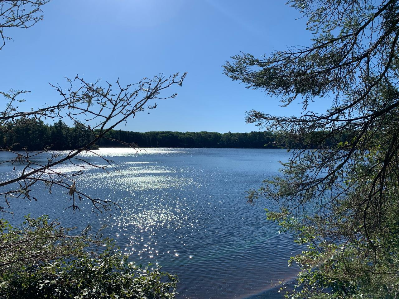 Exceptional building lots now available on Landing Lake in Vilas County. The pristine Landing Lake flows into Mill Lake offering you 328 acres of endless recreation. These lots offer ultimate privacy, towering trees and endless lake views. Sand frontage and crystal clear water.