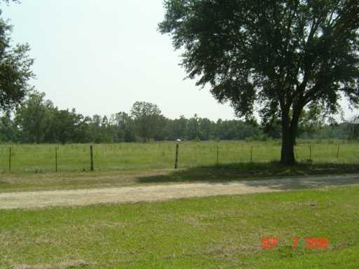 Land for Active at 53384 HWY 40 Loranger, Louisiana 70446 United States