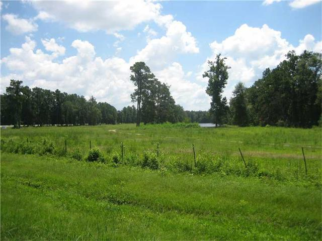 Land for Active at HWY 442/I-55 Highway Tickfaw, Louisiana 70466 United States