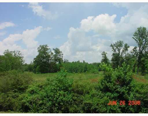 Land for Active at HWY 442 Tickfaw, Louisiana 70468 United States