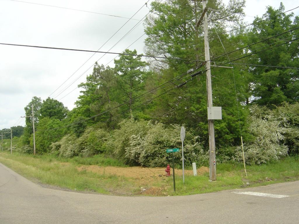 Terreno por un Venta en HWY 442 Loranger, Louisiana 70446 Estados Unidos