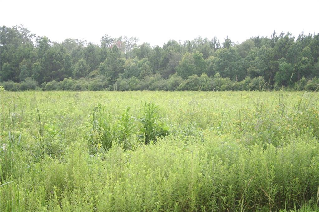 Land for Active at HIGHWAY 25 Highway Folsom, Louisiana 70437 United States
