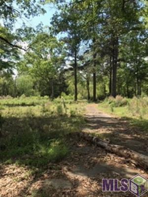 Terreno por un Venta en 27351 LA HWY 16 Denham Springs, Louisiana 70726 Estados Unidos