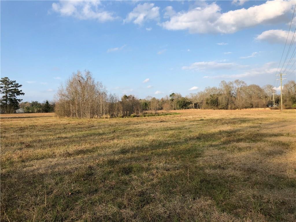 土地,用地 为 销售 在 29657 STEIN Road Sun, 路易斯安那州 70463 美国
