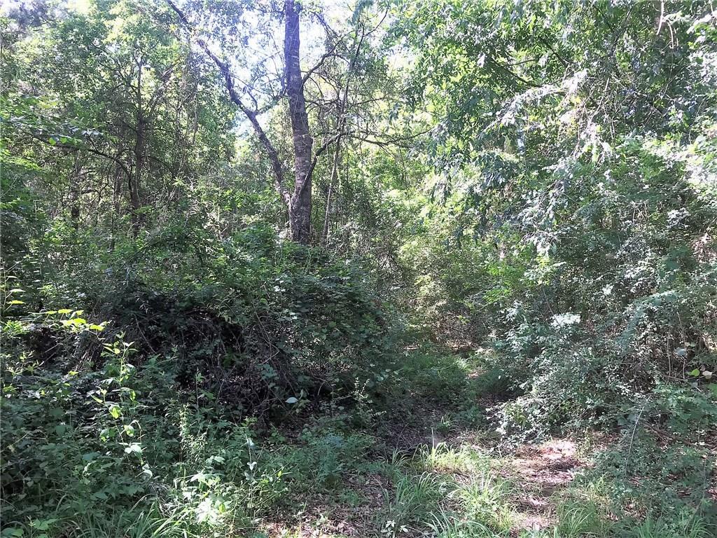 土地,用地 为 销售 在 61 Acres STEIN Road Sun, 路易斯安那州 70463 美国