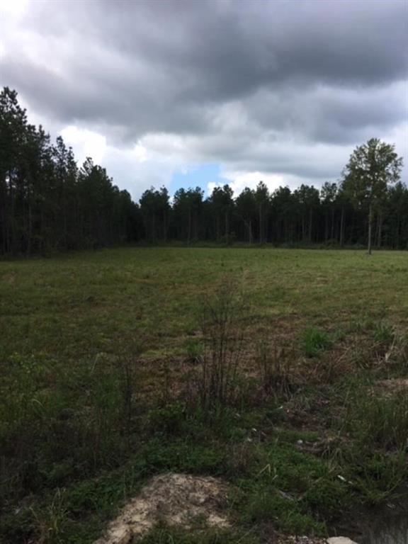 土地,用地 为 销售 在 HWY 10 Roseland, 路易斯安那州 70456 美国
