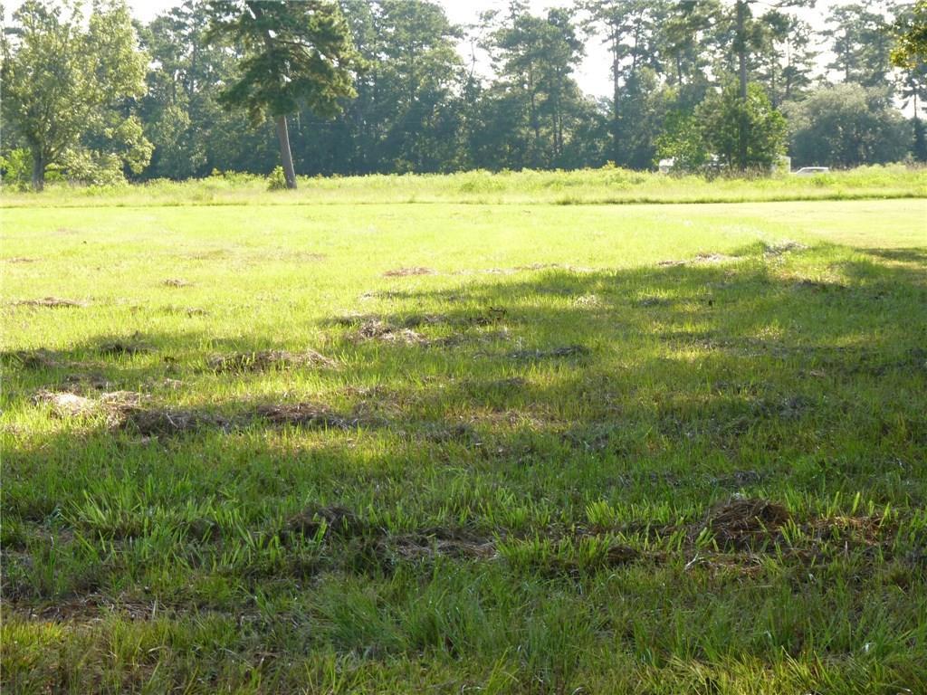 Terreno por un Venta en PATRICIA Drive Killian, Louisiana 70462 Estados Unidos