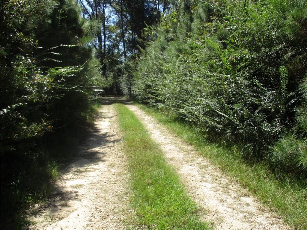 Terreno por un Venta en HIGHWAY 62 Highway Varnado, Louisiana 70426 Estados Unidos