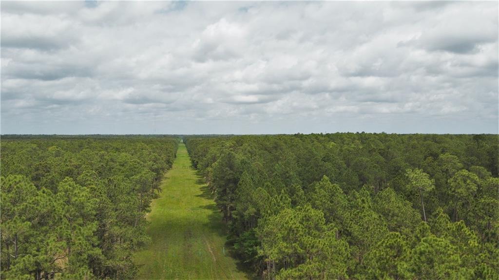 Terreno por un Venta en CHENE Drive Lacombe, Louisiana 70445 Estados Unidos