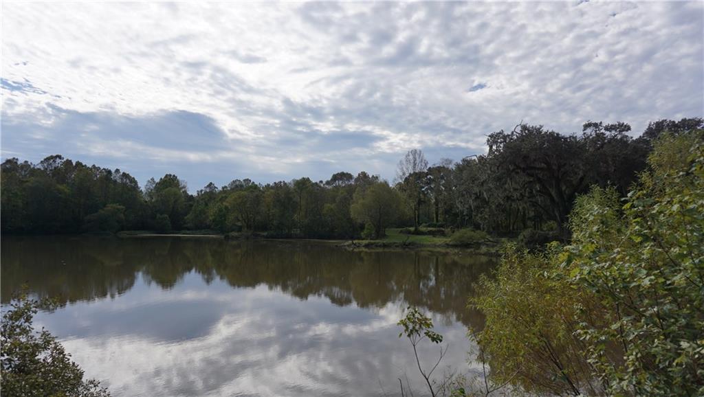 Terreno por un Venta en 19578 GREENWELL SPRINGS Road Greenwell Springs, Louisiana 70739 Estados Unidos