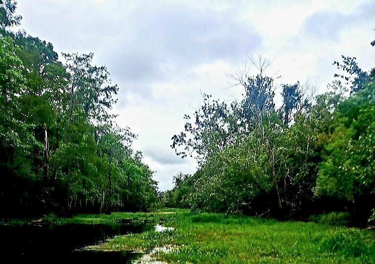 Terreno por un Venta en Lot 8 BLIND RIVER Lutcher, Louisiana 70071 Estados Unidos