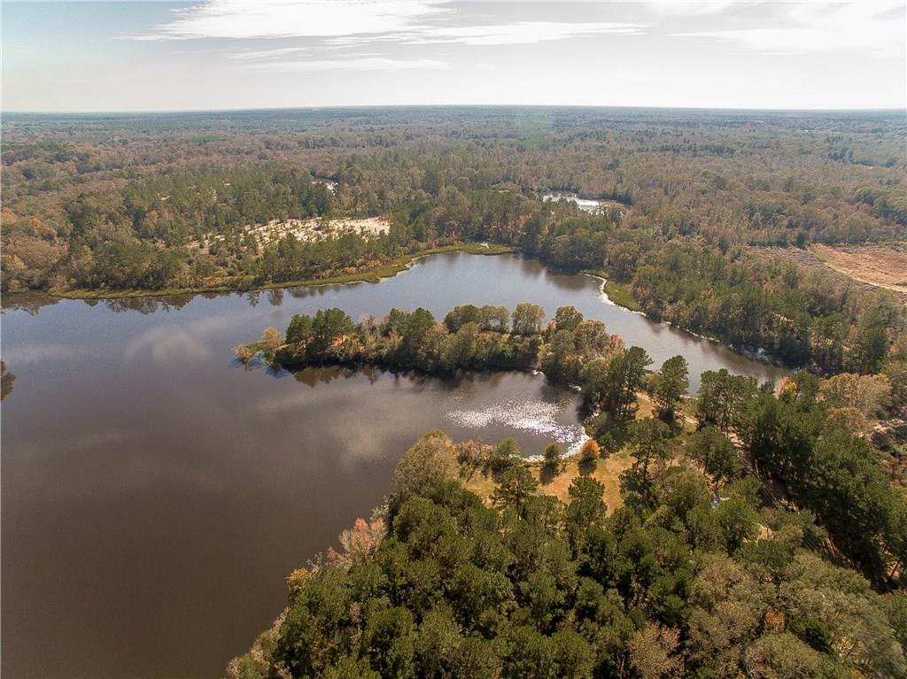 Land for Active at 13350 E CHESTNUT Street Amite, Louisiana 70422 United States