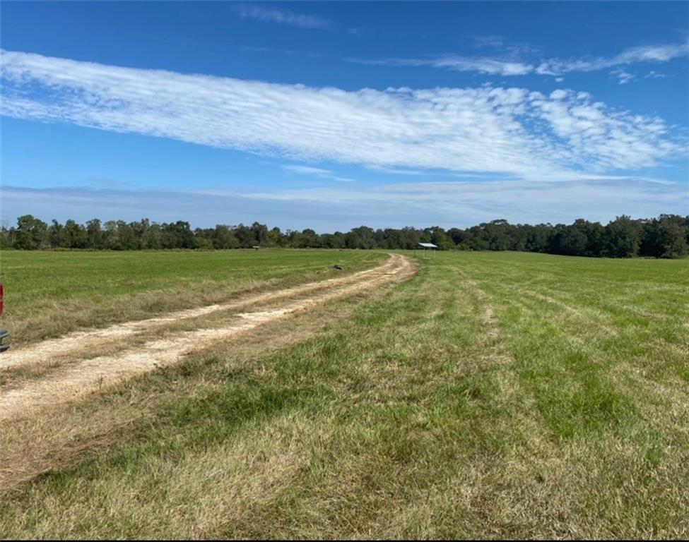 22155 1056 Highway, Kentwood, Louisiana 70444, ,Land,For Sale,22155 1056 Highway,2284216