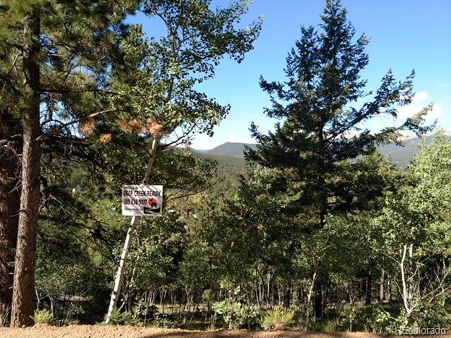 Well treed, walk to national forest, privacy and end of the road feel to this back end Harris Park property.  Definite slope but has the character for your imagination and potentialSign on property.  Private fishing available HOA voluntary. Needs well and Septic