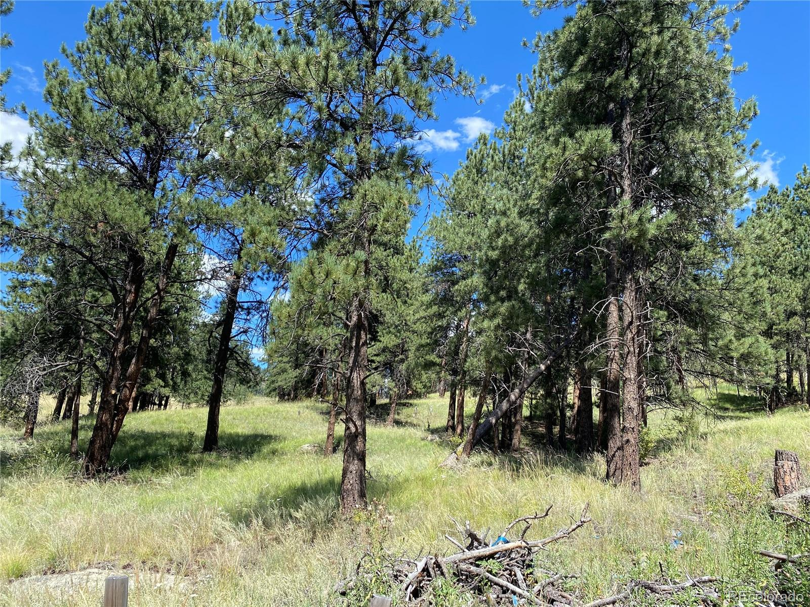 BRING Offer*Fantastic opportunity for new commercial development!  15+ gently sloping to sloped acres off Crow Hill provide a pleasing, natural mountain backdrop for any use.  Ideal for investors, developers or owner users.  Build to suit your vision for growing Bailey community!  Excellent visibility and access from US Hwy 285.  Accessible via existing paved road.  Well drilled on property.  Taxes will be determined in accordance with new use.