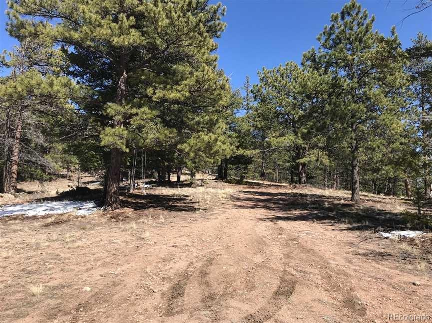 Here is a rare opportunity to own this Recreational/Camping 10 plus acre inholding located within the Pike National Forest!  The property is surrounded with Ponderosa Pine, Douglas fir and Aspen trees.  Located just 1.5 hours West of Colorado Springs, the property is only a 10 minute hike to 11 Mile Canyon which boasts one of the most scenic and beautiful sections of the South Platte river and is host to freshwater fishing, equestrian, hiking, and biking trails, bird watching and camping. As per Park County, building a structure on this property is also possible via a Conditional Use Permit which must be submitted to the county prior to building.