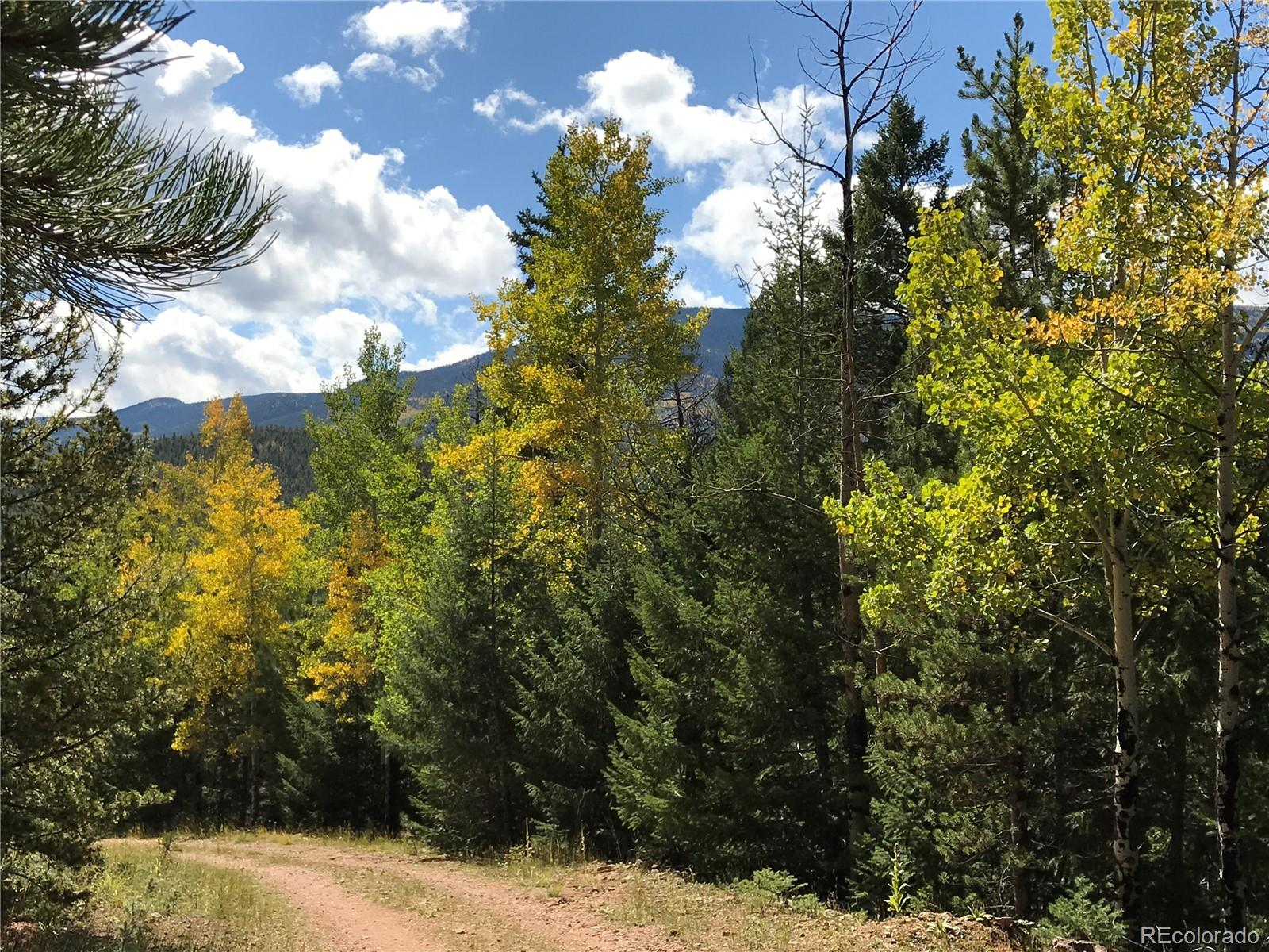 Photo of 7231  Timbertrail Road, Evergreen, CO 80439