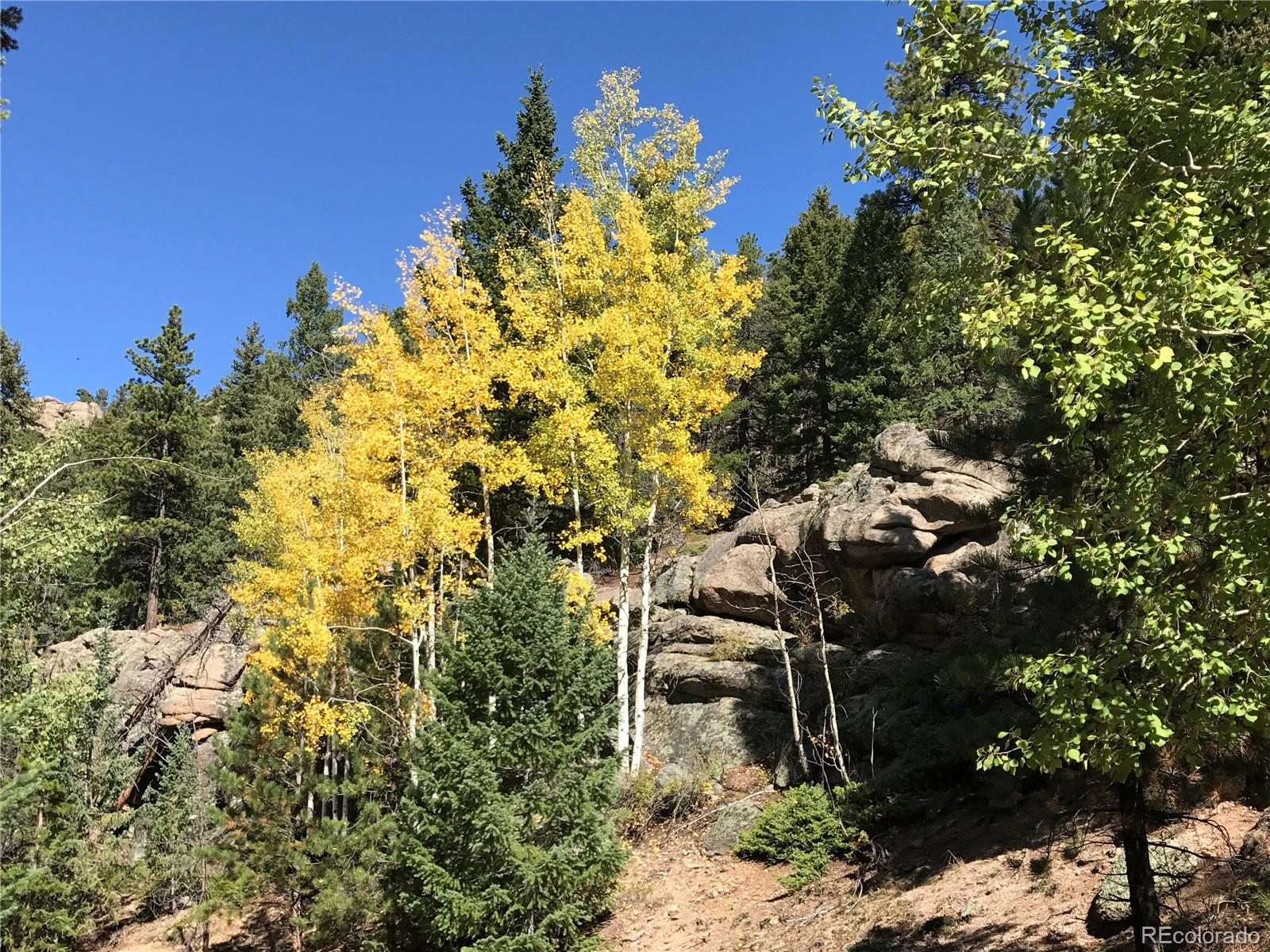 Photo of 32744  Lodgepole Circle, Evergreen, CO 80439