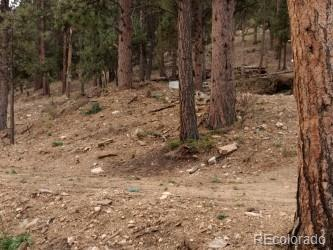 Land w/old cabin foundation that can be torn down or keep for setback grandfather rights w/already approved setback variance.  Excellent well already in place + 3 compartment septic tank.  Old septic plan available.  Call 4 details.  Check supplements 4 more info & plat.  Easy access to quick Denver commute.  Desirable area for homes.  Nice views, too!